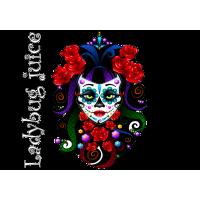 Logo Ladybug Juice