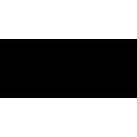 Logo FROZEN SHAKE