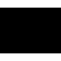 Logo BLACK SALOON