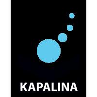 Logo FASCINATION