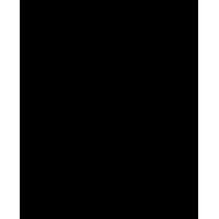 Logo Peaky Winders