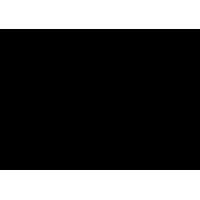 Logo PREMIER VAPING